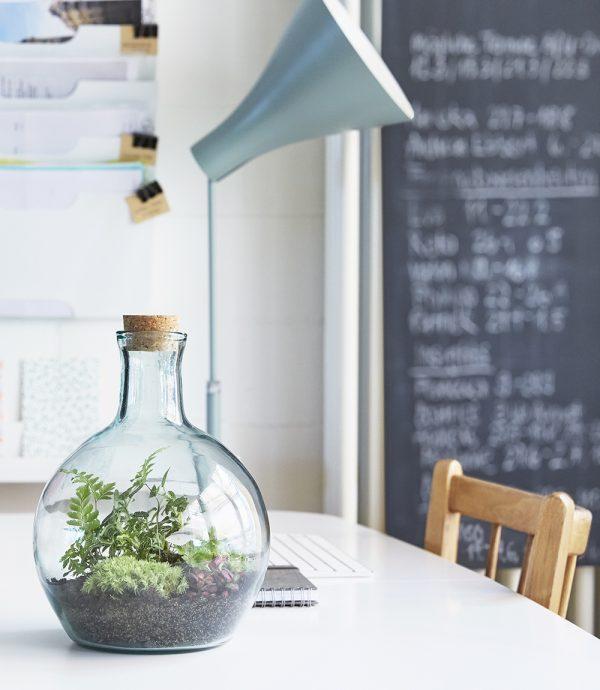 flaschengarten-kundengeschenk