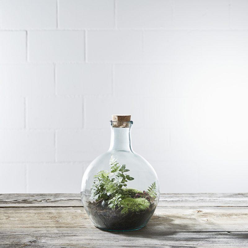 flaschengarten-wettbwerb-gewinnen