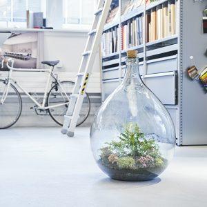 flaschengarten-terrarium-team-workshop