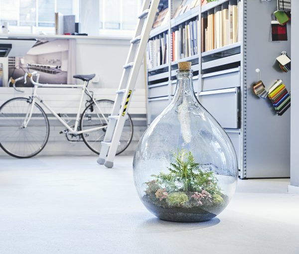 flaschengarten-terrarium-team-workshop
