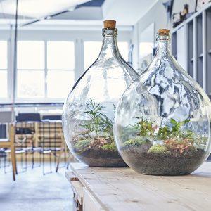 buerobegruenung-flaschengarten-kaufen-schweiz