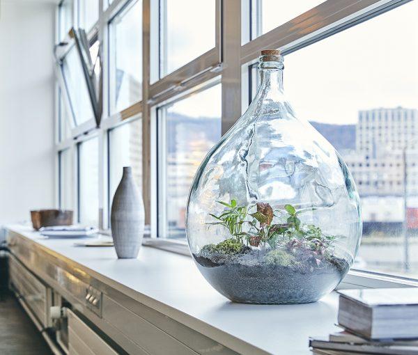 flaschengarten-office-delight-34-bürobegrünung