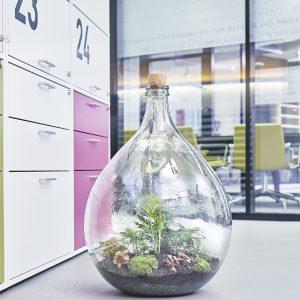 flaschengarten-office-delight-54-kaufen-bepflanzt-schweiz-bürobegrünung
