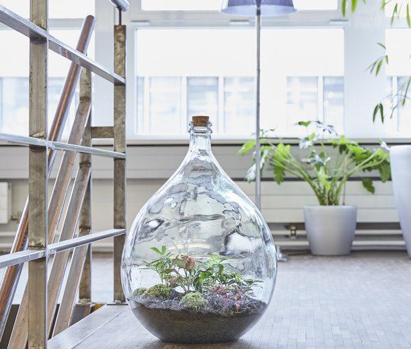 flaschengarten-office-delight-54-bepflanzt-kaufen-schweiz