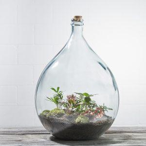 flaschengarten-office-delight-34-fertig-bepflanzt-kaufen-schweiz