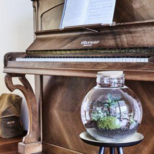 flaschengarten-kaufen-bepflanzt-schweiz