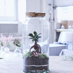 flaschengarten-bellevue-bepflanzt-kaufen-zuerich