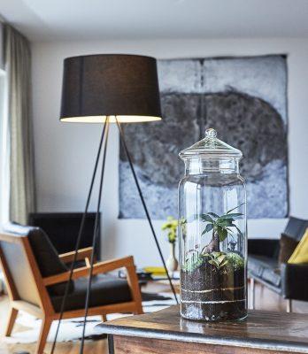 pflanzen-im-glas-kaufen-schweiz