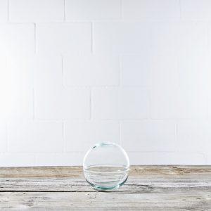space-ball-mooskugel-flaschengarten-terrarium-pflanzen-im-glas