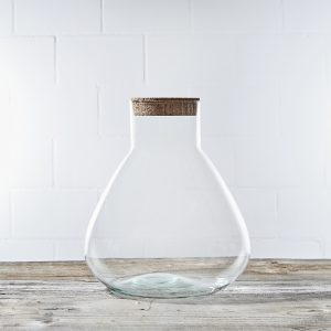 erlenmeyer-jungle-glas-terrarium-leer